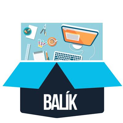 Počítačový kurz REPAS balík - Webdesigner profesionál