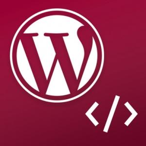 Počítačový kurz WordPress pre developerov - upravujeme témy a tvoríme moduly