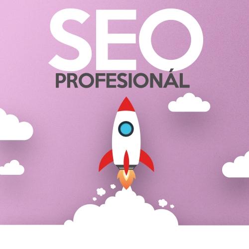 Balík SEO Profesionál - optimalizácia pre vyhľadávače