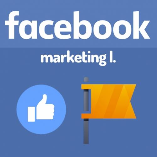 Facebook marketing I. - vedenie a správa firemnej stránky, virálna komunikácia a ako byť správny sociálny manažér
