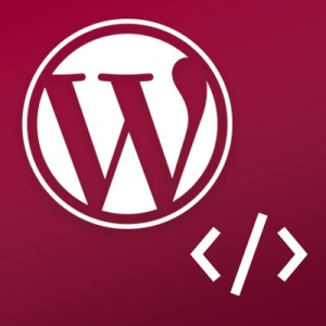 WordPress pre developerov - upravujeme témy a tvoríme moduly