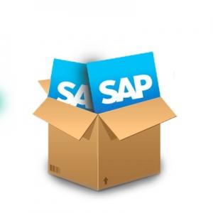 SAP používateľ profesionál - začíname so SAPom, základy a pokročilá práca so systémom