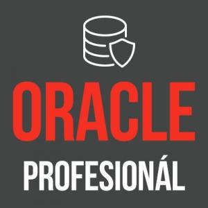 Balík Oracle profesionál - od základov jazyka SQL, PL/SQL až po pokročilé metódy analýzy dát