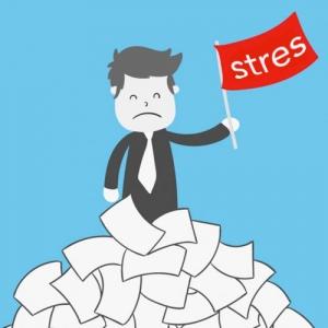 Stres manažment a tréningové metódy I. - zníženie negatívnych dôsledkov stresu a zvýšenie výkonnosti