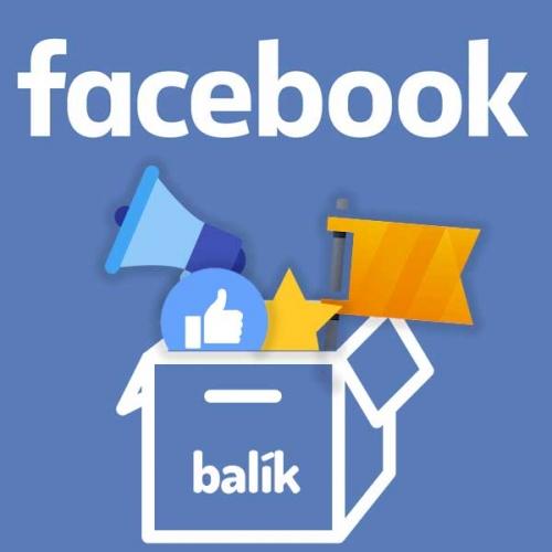 Balík Facebook Social manažér - profesionálny správca stránky, ktorý nerobí značke hanbu, ale generuje povedomie a zisk