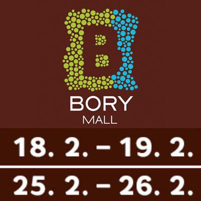 Testovanie IT zručností v Bory Mall