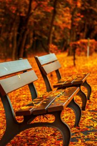 foto zadarmo - jesenné lavičky