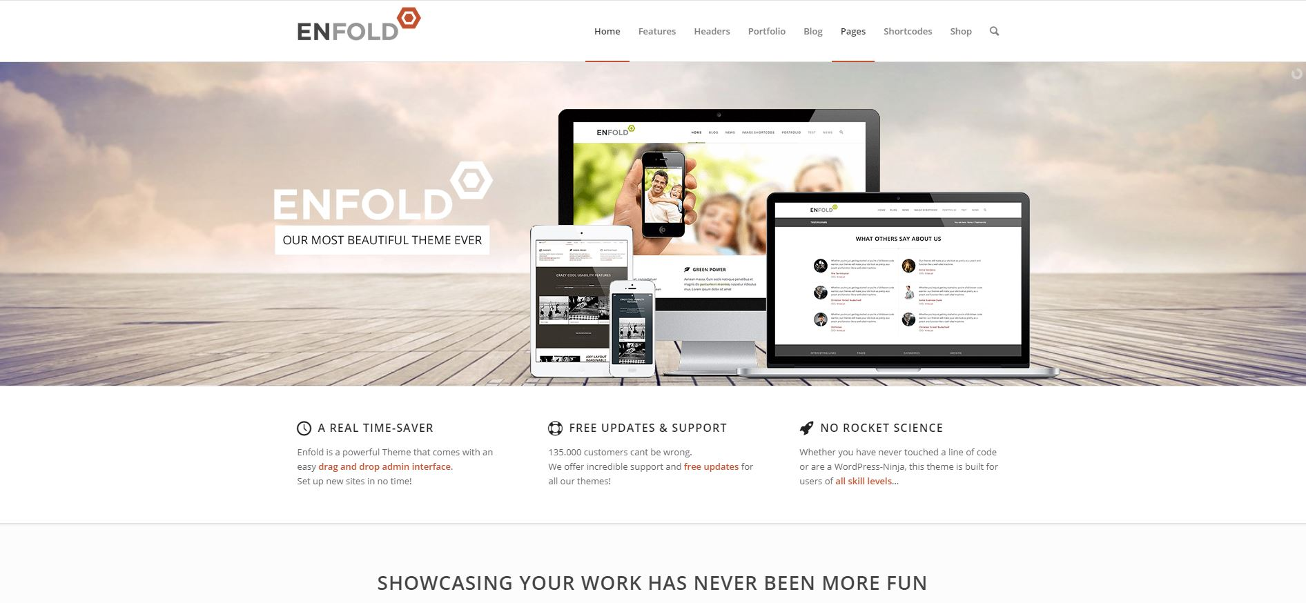 enfold-wordpress-theme-demo