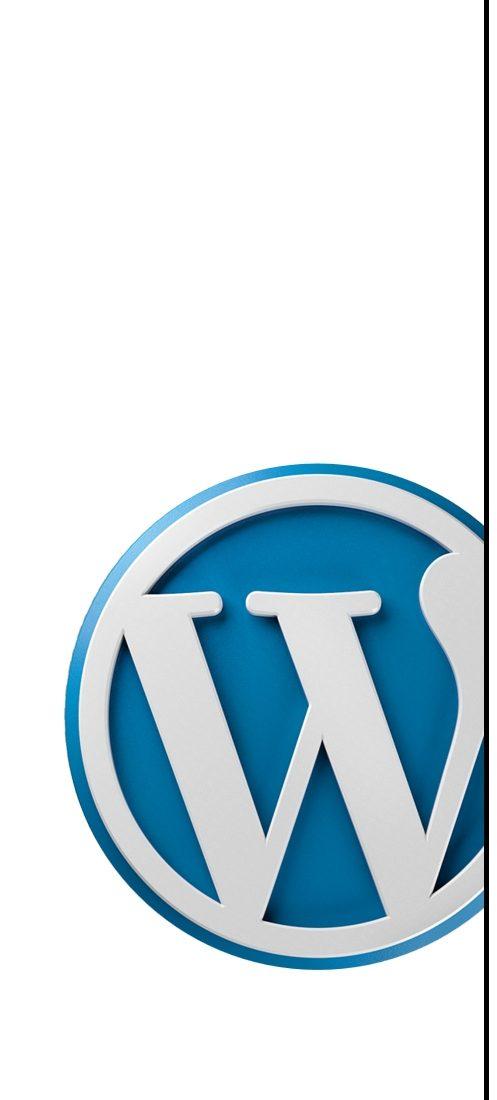 binznis na webe a wordpress - ako nastaviť redakčný systém wordpress pre biznis