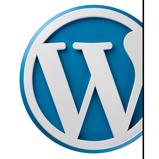 Prečo biznis cez WordPress nefunguje