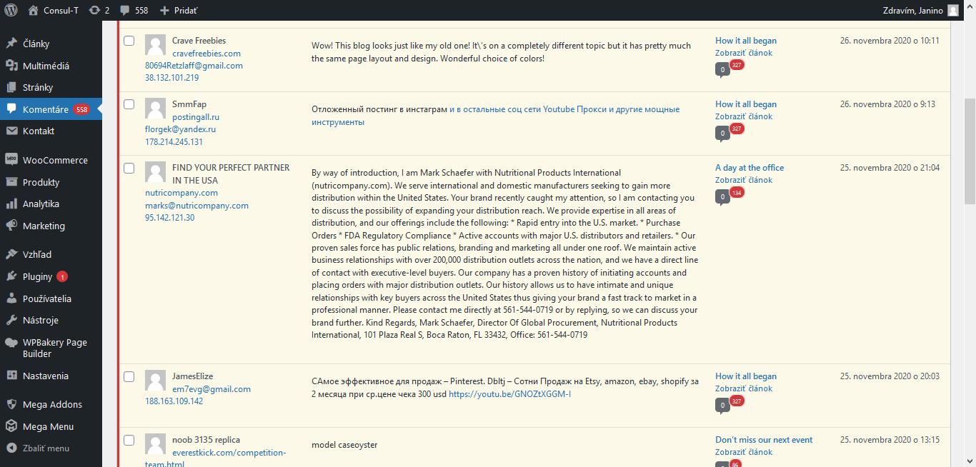 pohľad do priečinka Komentáre vo WordPresse so spamom - príklad spamového komentára